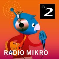 Logo of the podcast radioMikro - Wissen für Kinder