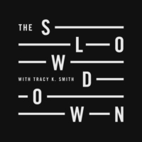 Logo of the podcast The Slowdown