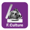 Logo du podcast France Culture - Continent musiques
