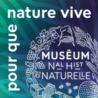 Logo of the podcast Biodiversité, le saut dans l'inconnu