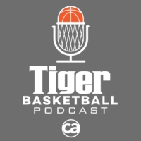 Logo of the podcast Tiger Basketball Podcast