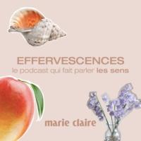 Logo du podcast Effervescences