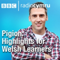 Logo du podcast Pigion: Highlights for Welsh Learners