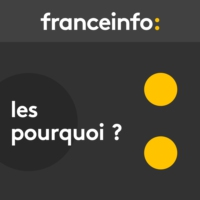 Logo of the podcast franceinfo - Les pourquoi