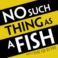 Logo du podcast Episode 122 - No Such Thing As A Sticky Shell Spoon