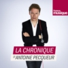 Logo of the podcast La chronique d'Antoine Pecqueur