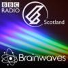 Logo of the podcast Brainwaves
