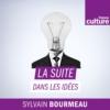 Logo of the podcast La Suite dans les idées