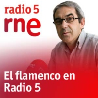 Logo of the podcast El flamenco Pedraz - Manolo de Santa Cruz - 29/06/10