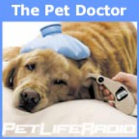 Logo of the podcast PetLifeRadio.com - The Pet Doctor - Keeping your pets healthy & pet wellness on Pet Life Radio.