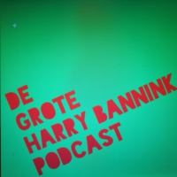 Logo du podcast De Grote Harry Bannink Podcast