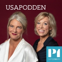 Logo of the podcast USApodden