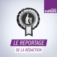 Logo du podcast L'université en anglais : soft power ou menace pour le français ?