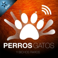 Logo of the podcast Perros, Gatos y Bichos Raros