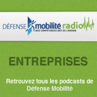 Logo du podcast Choisir un bon franchisé : le militaire un talent évident ! - 09/12/2014