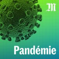 Logo of the podcast Pandémie