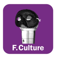 Logo du podcast FICTION