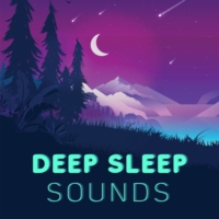 Logo of the podcast Deep Sleep Sounds