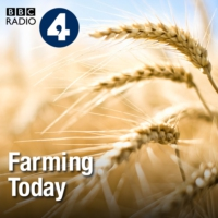 Logo du podcast Small Farms Research, Game Fair, Sewage Meadows, Pig Production