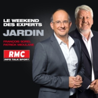 Logo du podcast RMC - Le weekend des experts : Votre jardin