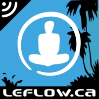 Logo of the podcast Le Flow : bien-être et performance