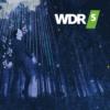 Logo du podcast WDR 5: Der dunkle Wald