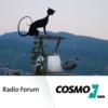 Logo du podcast COSMO Radio Forum