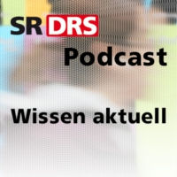 Logo of the podcast Tag des Schlafes: Stand der Schlafforschung