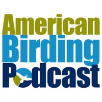 Logo of the podcast American Birding Podcast