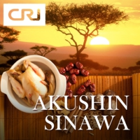 Logo of the podcast AKUSHIN SINAWA 06