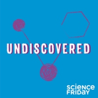 Logo of the podcast Undiscovered