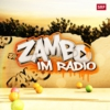 Logo of the podcast Zambo Radio für Kinder