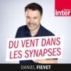 Logo of the podcast Du vent dans les synapses