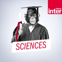 Logo du podcast Le fil sciences