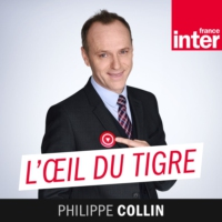 Logo of the podcast L'Oeil Du Tigre