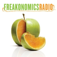 Logo du podcast Yes, the American Economy Is in a Funk -- But Not for the Reasons You Think