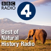 Logo du podcast Best of Natural History Radio