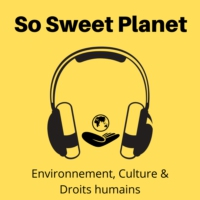 Logo of the podcast Le podcast de So Sweet Planet