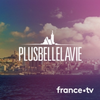 Logo of the podcast Plus belle la vie