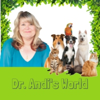 Logo of the podcast Dr. Andi's World