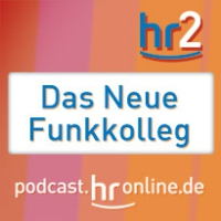 Logo of the podcast (22) Cyberstories - Erzaehlen in den dig