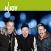 Logo of the podcast N-JOY - Was Wollen Wissen mit Fettes Brot