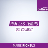 Logo of the podcast France Culture - Par les temps qui courent