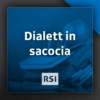 Logo of the podcast Dialett in sacocia