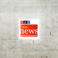 Logo du podcast NPR News: 03-11-2015 9AM ET