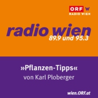 Logo of the podcast Radio Wien Pflanzentipps