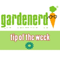 Logo of the podcast Gardenerd Tip of the Week