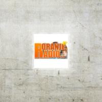 Logo of radio station Radio Oranje