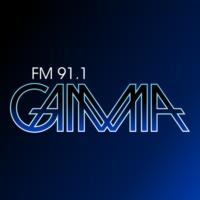 Logo of radio station Gamma 91.1 FM