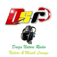 Logo de la radio D.S.R